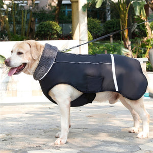 Open image in slideshow, Outdoor Dog Jacket