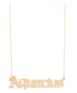 Rep Your Zodiac Necklace