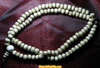 Great Tibetan mala in conch