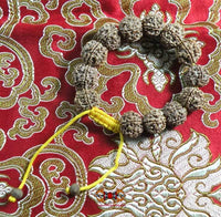 Wrist mala in rudraksha to 6 facets.