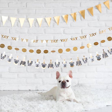 Party Dog Banner