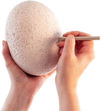 Load image into Gallery viewer, Dig It Up! The Big Egg Excavation Kit!