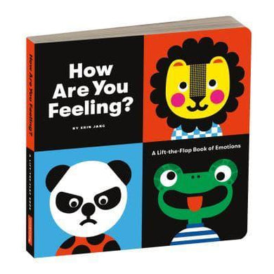 How Are You Feeling? - A lift the flap book of emotions