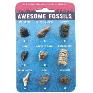 AWESOME FOSSIL CARD