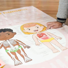 Load image into Gallery viewer, Human Body Discovery Educational  Poster + 49 Stickers (3-7 Years Old)