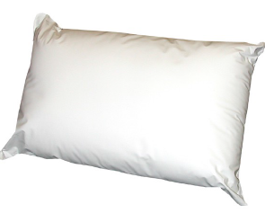 Sleepyhead Microfresh Waterproof Pillow