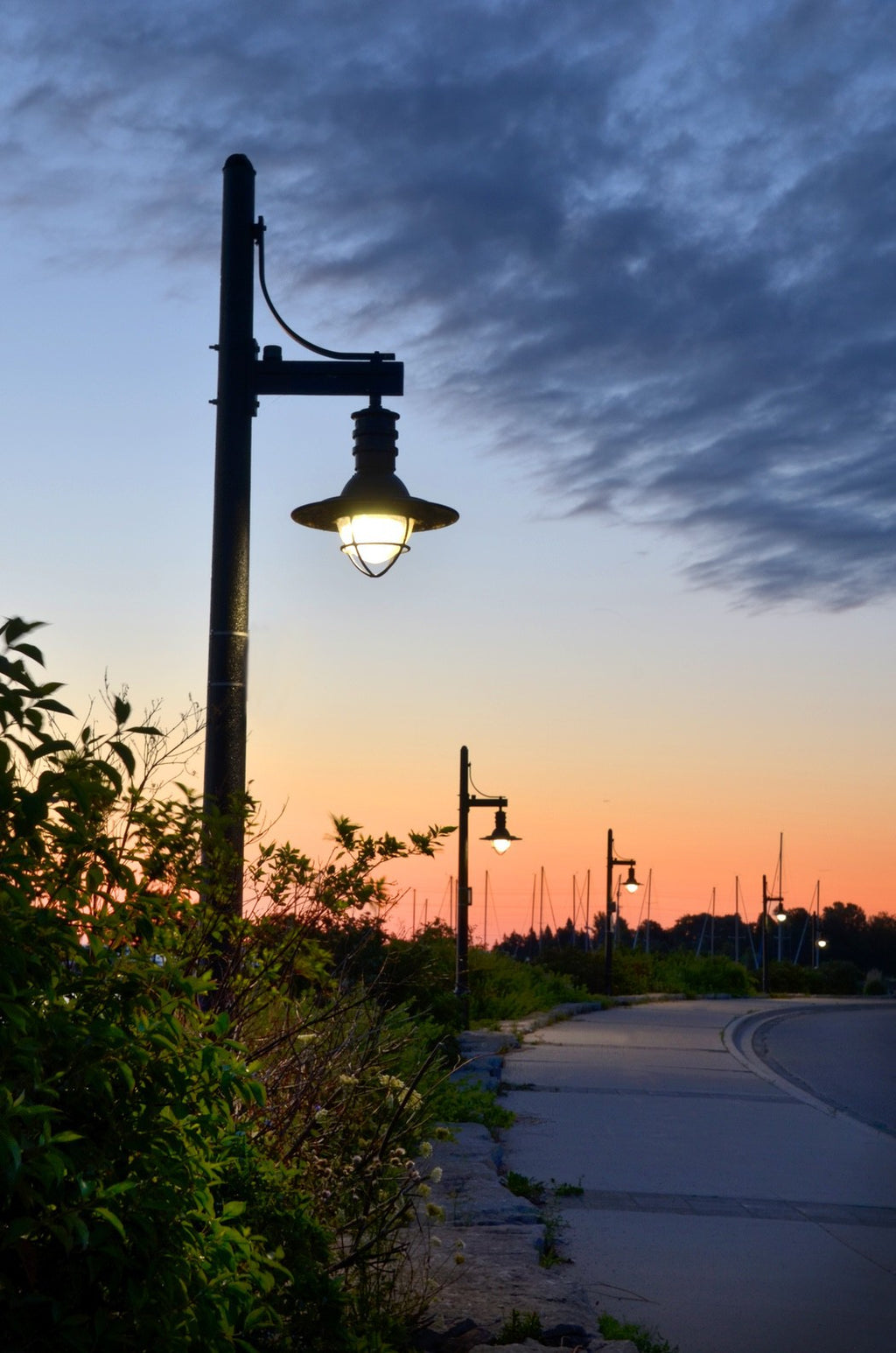 Lamplight Morning