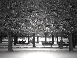 Paris Park in Black and White