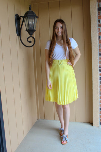 Pleated Chiffon Midi Skirt - Simply L Boutique