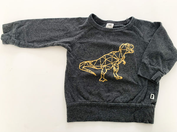 Little & Lively grey long sleeve with metallic dino size 6-12 months