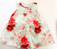 Gap floral dress w/embroidery (12-18 months)