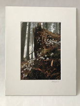 Load image into Gallery viewer, Factory Obscura Artist Leigh Martin: 5x7 Art Print of Knitted Installations