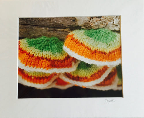 Factory Obscura Artist Leigh Martin: 8X10 Art Prints of Knitted Installations