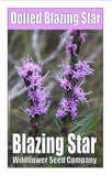 Dotted Blazingstar