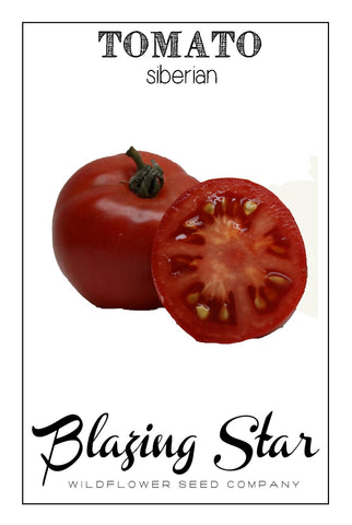 Siberian Heirloom Tomato seeds
