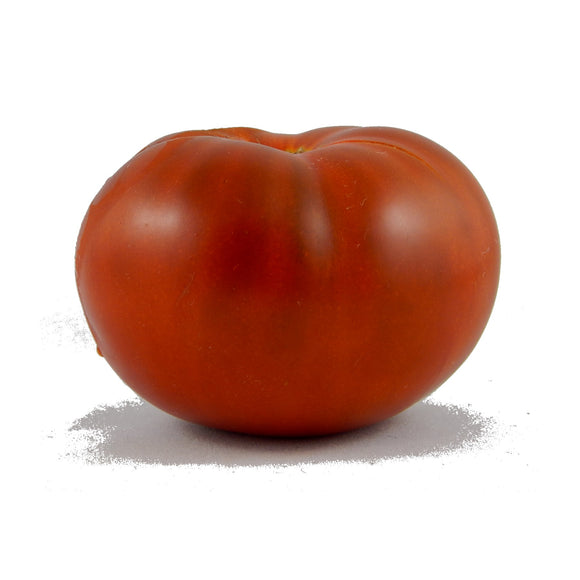 TOMATO chocolate champion