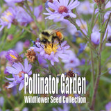 Pollinator Garden Seed Collection