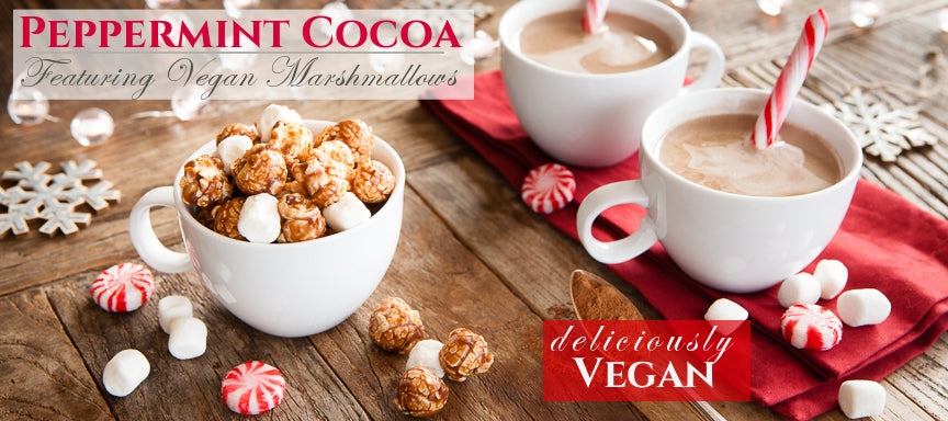 VEGAN Vegan Peppermint Hot Cocoa Christmas Popcorn Holiday Gift Gourmet