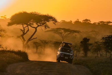 Sunset Safaris