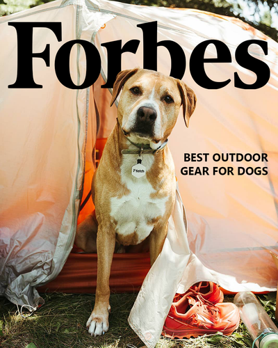 Fetch in Forbes