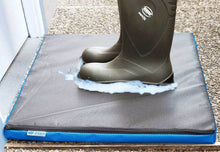 Disinfection Foot Mat