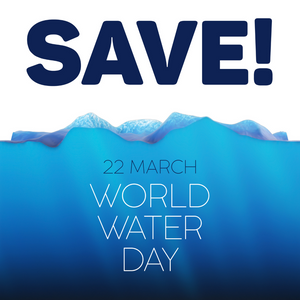 "WORLD WATER DAY 2021: ""VALUING WATER"""