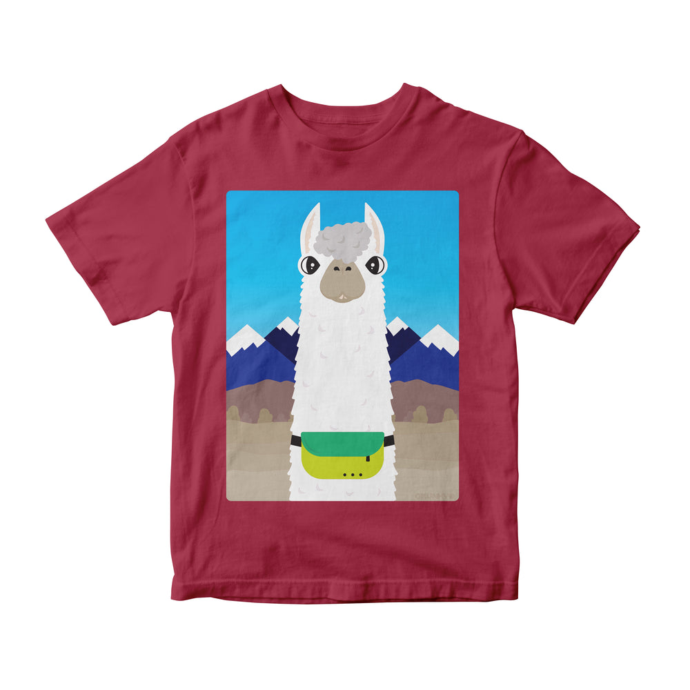 Don't Worry, Alpaca Fanny! Kids (Infant & Toddler)