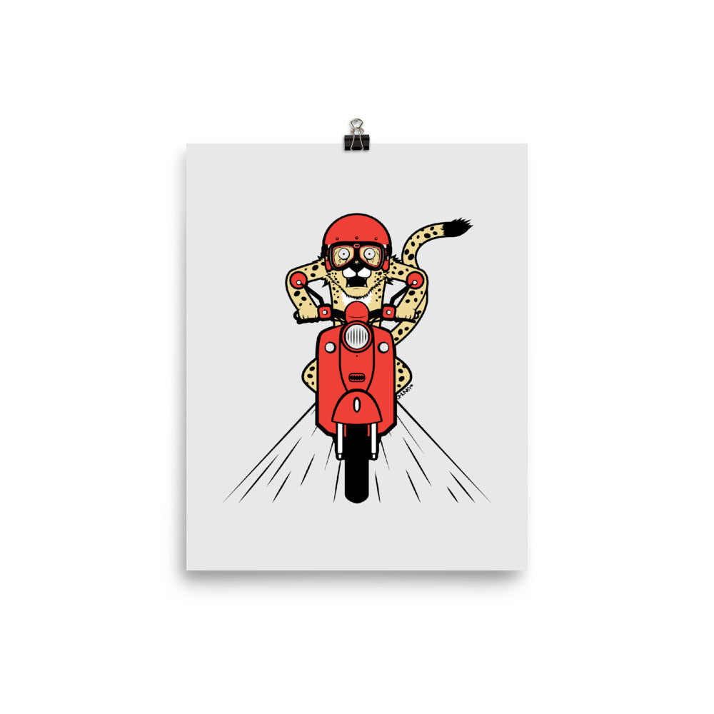 Cheetah Scooter Poster