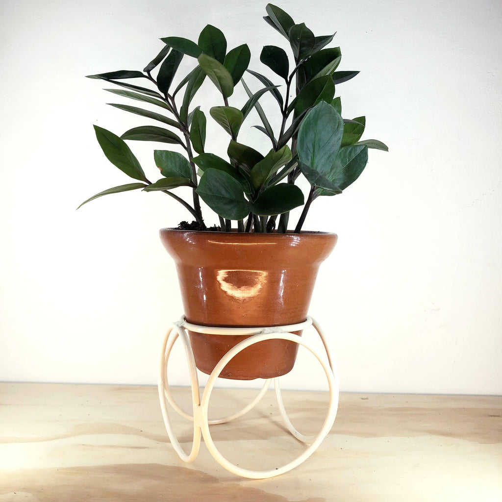 Desktop Orbit Planter Home Goods BOONIES