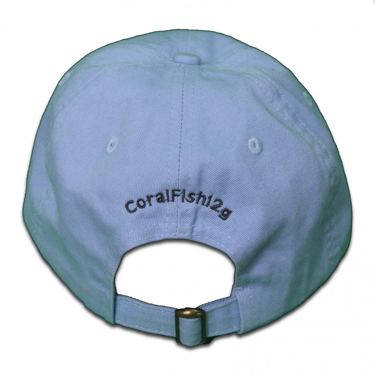 CoralFish12g Blue Hat