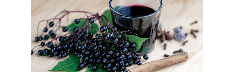 Does Black Elderberry Really Boost Immune System?
