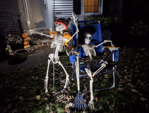 Best Halloween Skeleton Decoration with Movable /Posable Joints