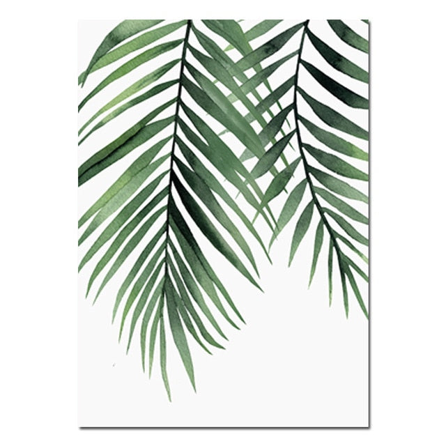 Areca Palm Canvas Art Print