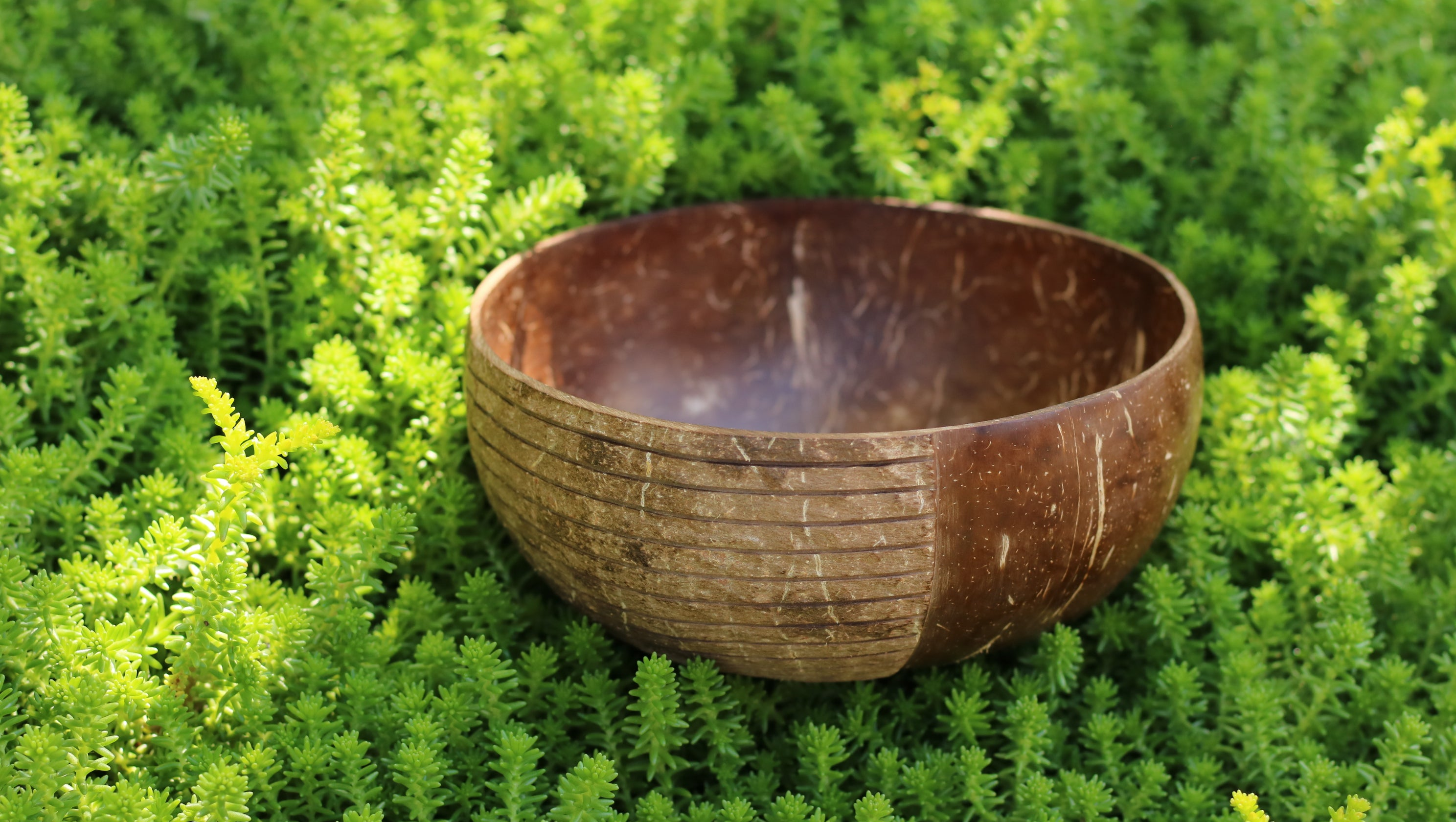 Two Tales | Boho Coconut Bowl