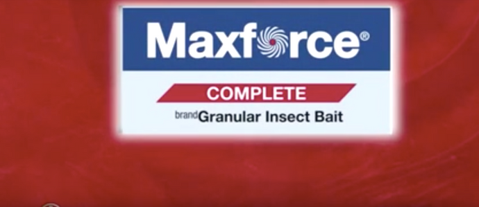 Maxforce Complete Insect Granules Video Guide