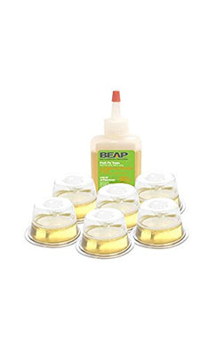 BEAPCO Fruit Fly Traps (6 Pack)