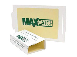 Catchmaster 72MAX Pest Trap, 36Count White