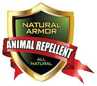 Natural Armor Repellent Spray for Rodents & Animals. Cats, Rats, Squirrels, Mouse & Deer. Repeller & Deterrent for Dogs, Critters, Mice, Raccoon & Skunk Peppermint Pint Ready to Use