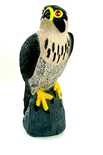 Bird-X Falcon Predator Bird Scare Decoy Device
