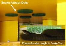 Load image into Gallery viewer, Snake Trap Humane