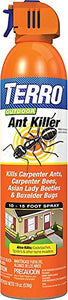 TERRO Outdoor Ant Killer Aerosol Spray (19 oz.)