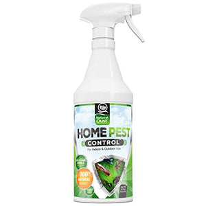 Organic Home Pest Control Indoor/Outdoor Spray (16 oz)