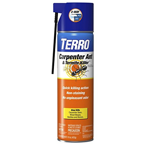 Terro Carpenter Ant and Termite Killer (16 oz. Can, Pack of 2)