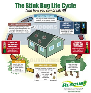 RESCUE! Non-Toxic Reusable Stink Bug Trap