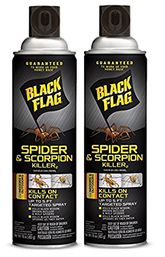 Black Flag Spider and Scorpion Killer Aerosol Spray, (16 oz, Pack of 2)