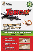 Load image into Gallery viewer, Tomcat Scorpion Glue Boards (4 Pack)