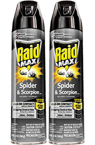 Raid Max Spider & Scorpion Killer (12 oz, 2 Pack)
