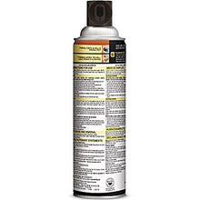 Load image into Gallery viewer, Black Flag Spider and Scorpion Killer Aerosol Spray, (16 oz, Pack of 2)
