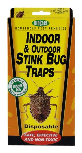 BioCare Indoor Stink Bug Trap