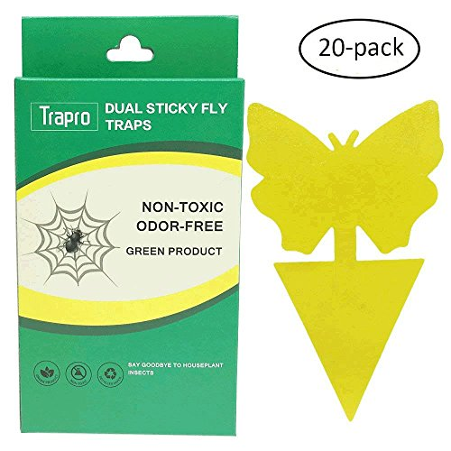 Faicuk Fruit Fly / Gnat Trap (20 Pack)